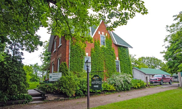 Old house with ivy growing up it. Sign: main office